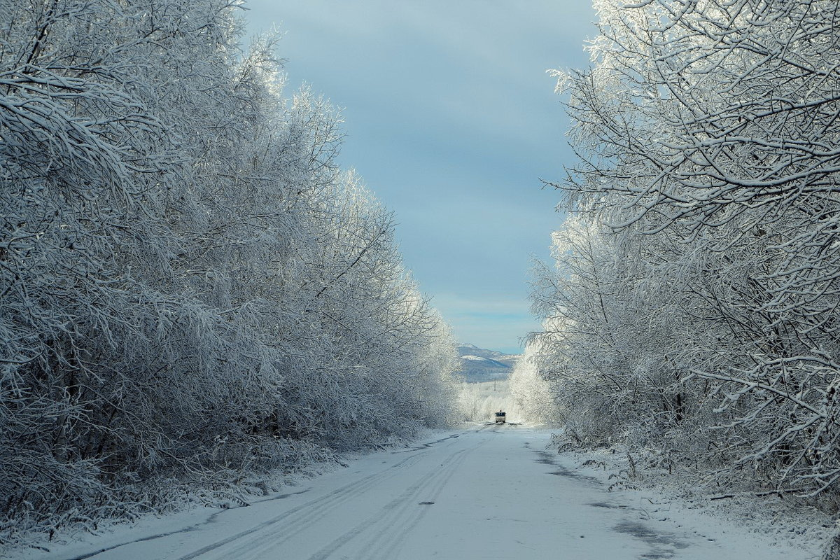 Дорога в Зиму - Татьяна