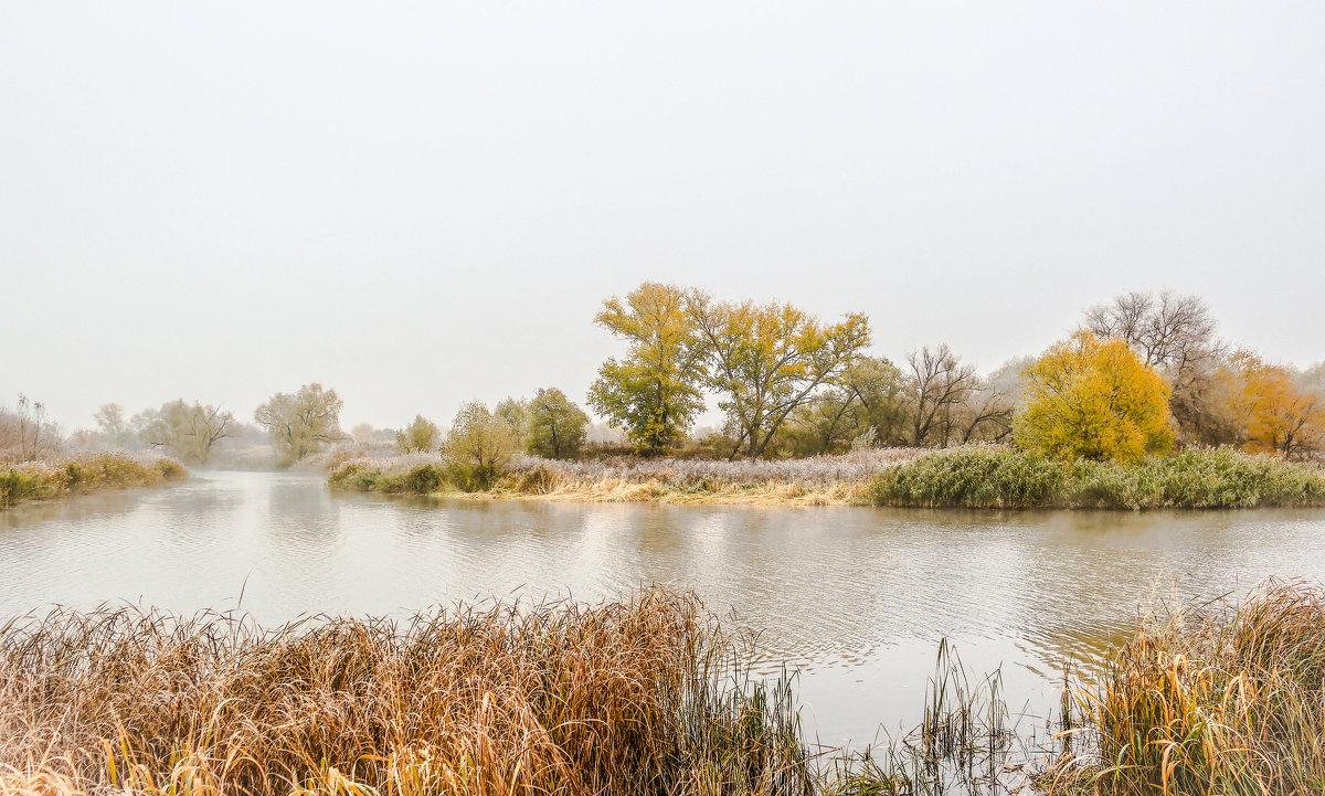 Туманное утро на реке Цне................... - Александр Селезнев