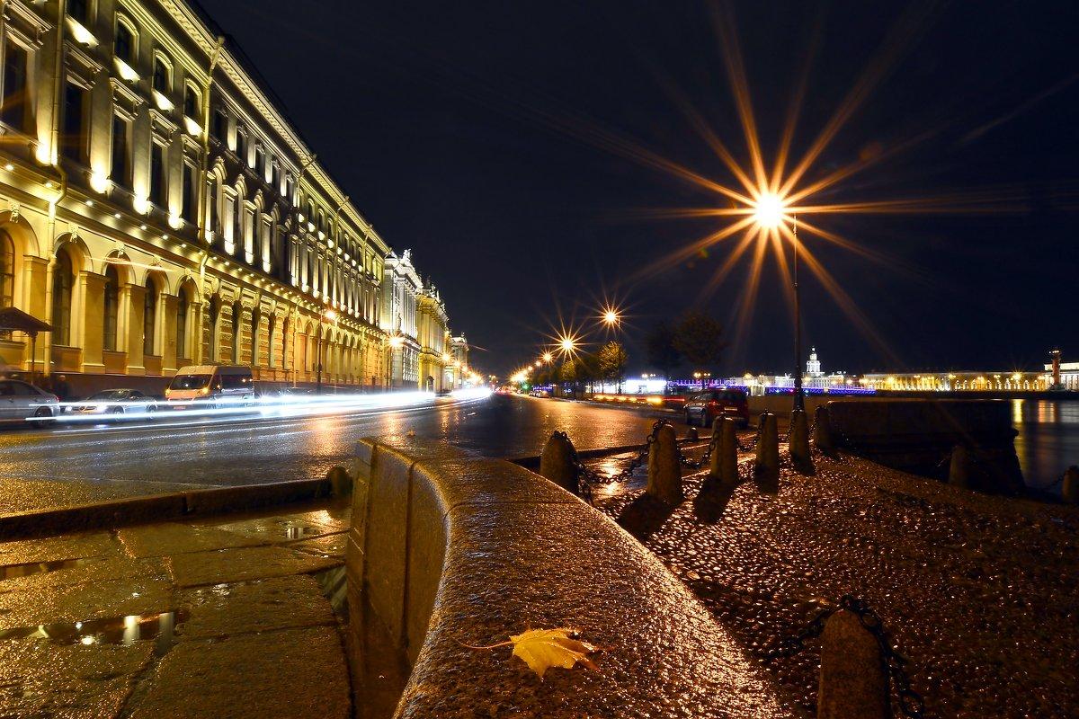 Ночь на Дворцовой набережной... - Витас Бенета