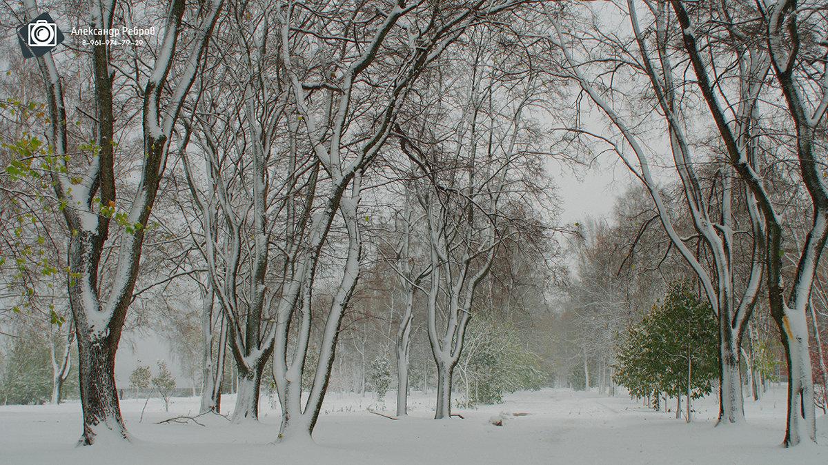 Рыбинск, Набережная - Александр Ребров