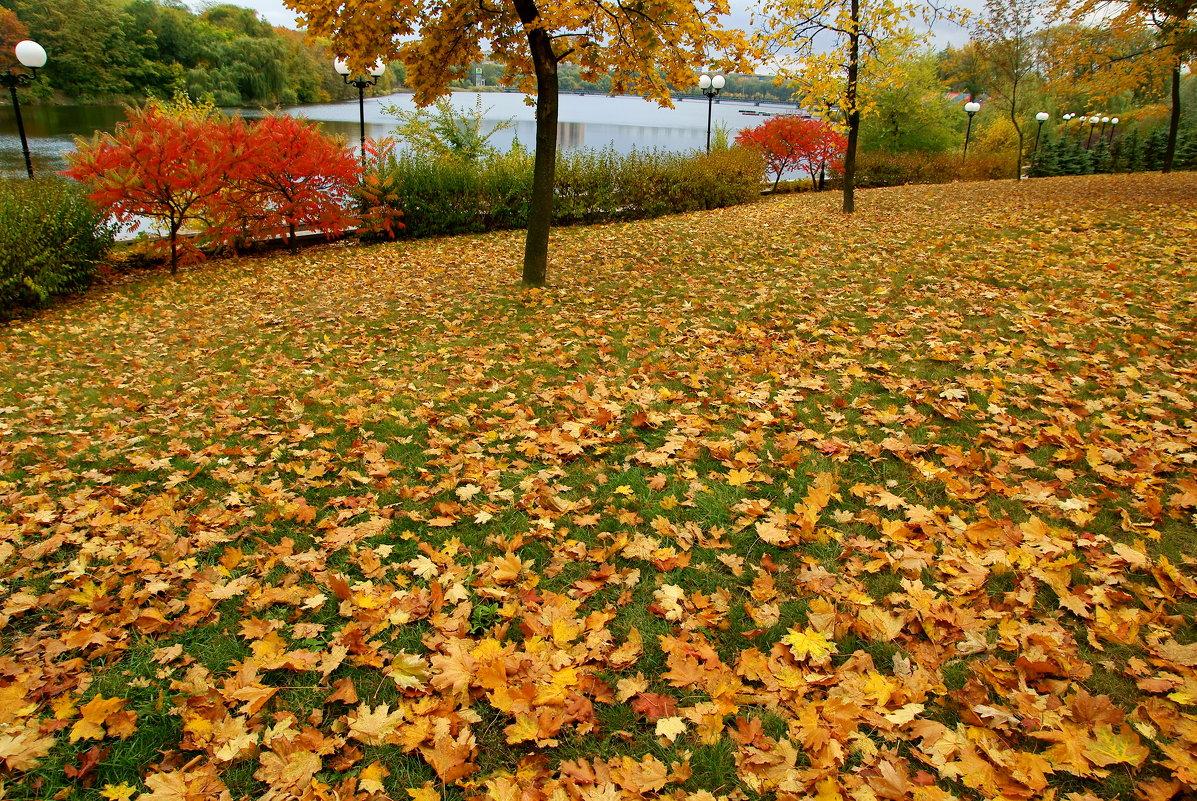 Осенние краски... - Vladimir T