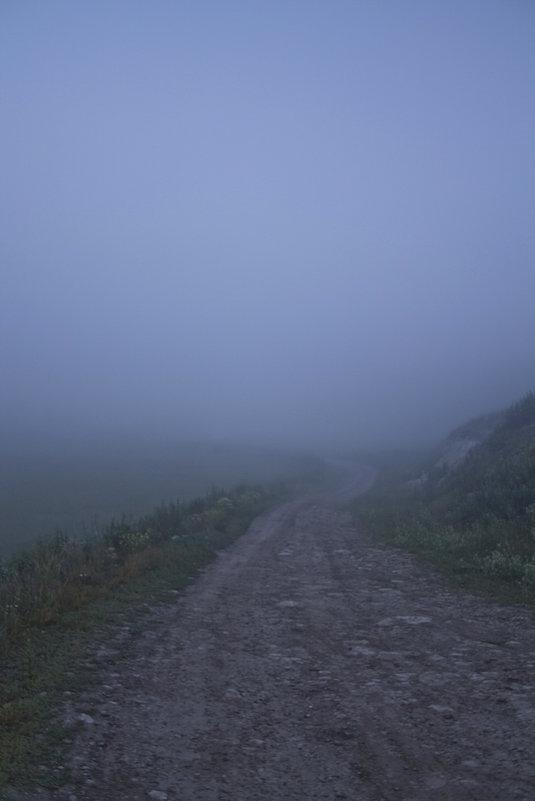 Сквозь туман кремнистый путь блестит... - Senior Веселков Петр