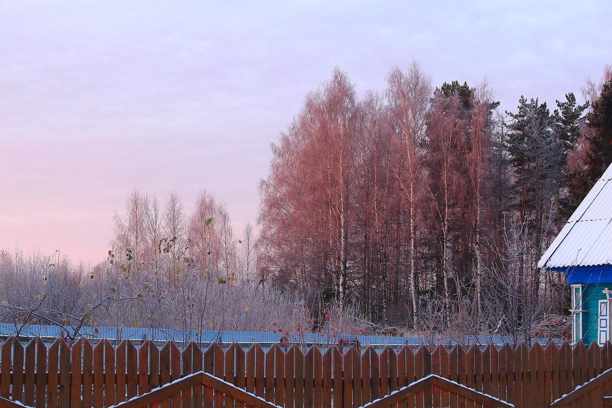 Розовое утро ноября - Татьяна Ломтева