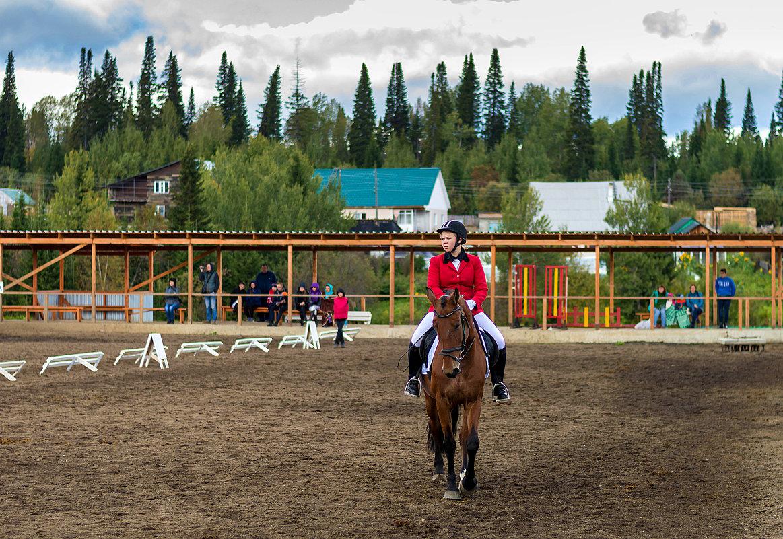 Конный спорт, репортаж - Владимир Деньгуб