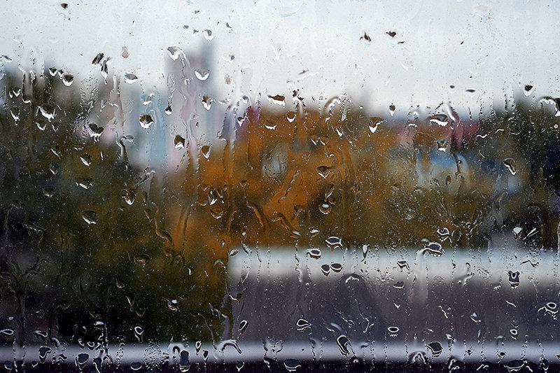 Дождливый день... - Виталий Павлов