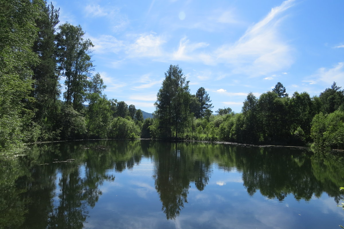 Лесное озеро - Вера Щукина