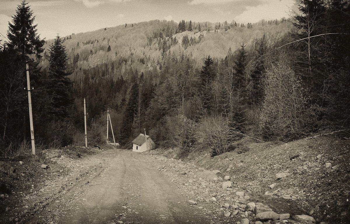 Карпаты - Роман Савоцкий