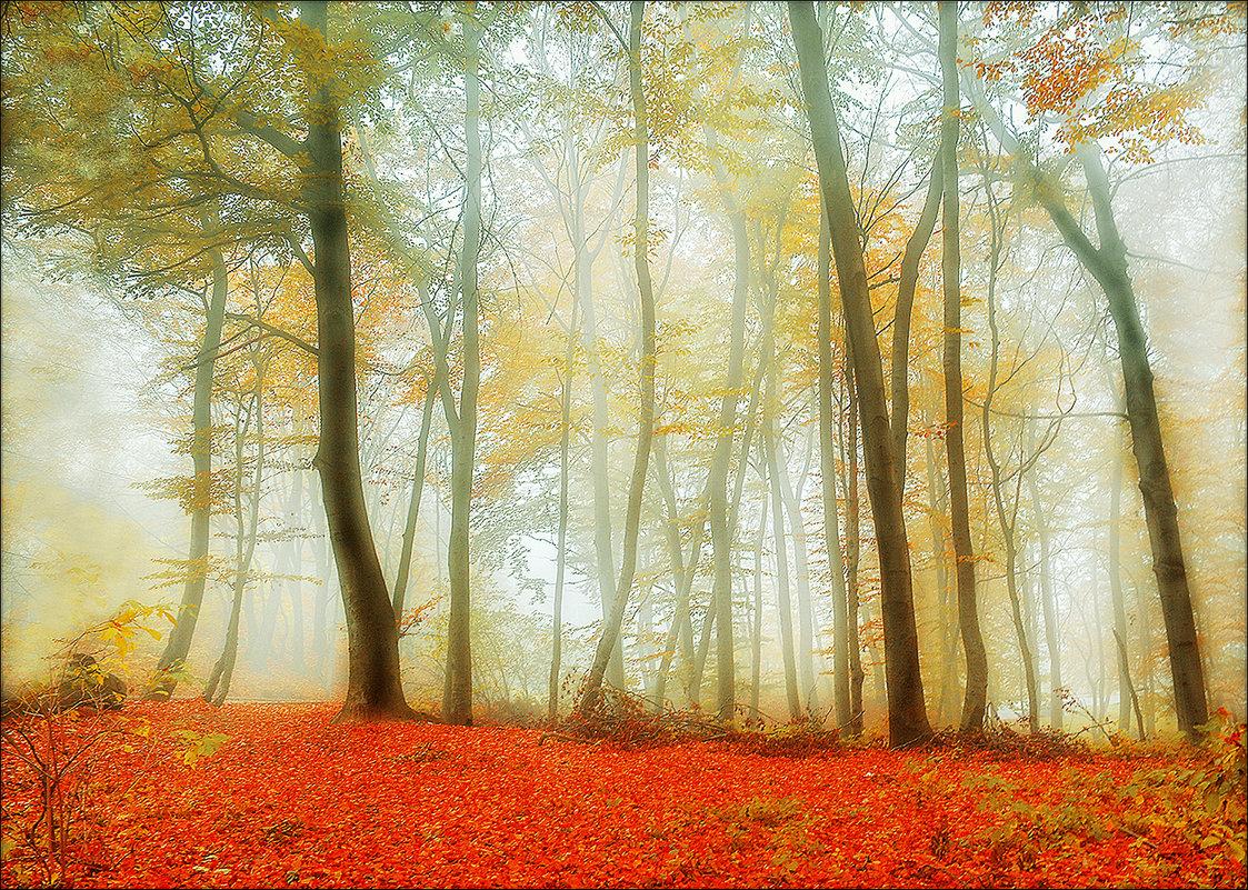 Осенний туман. - Юрий Гординский