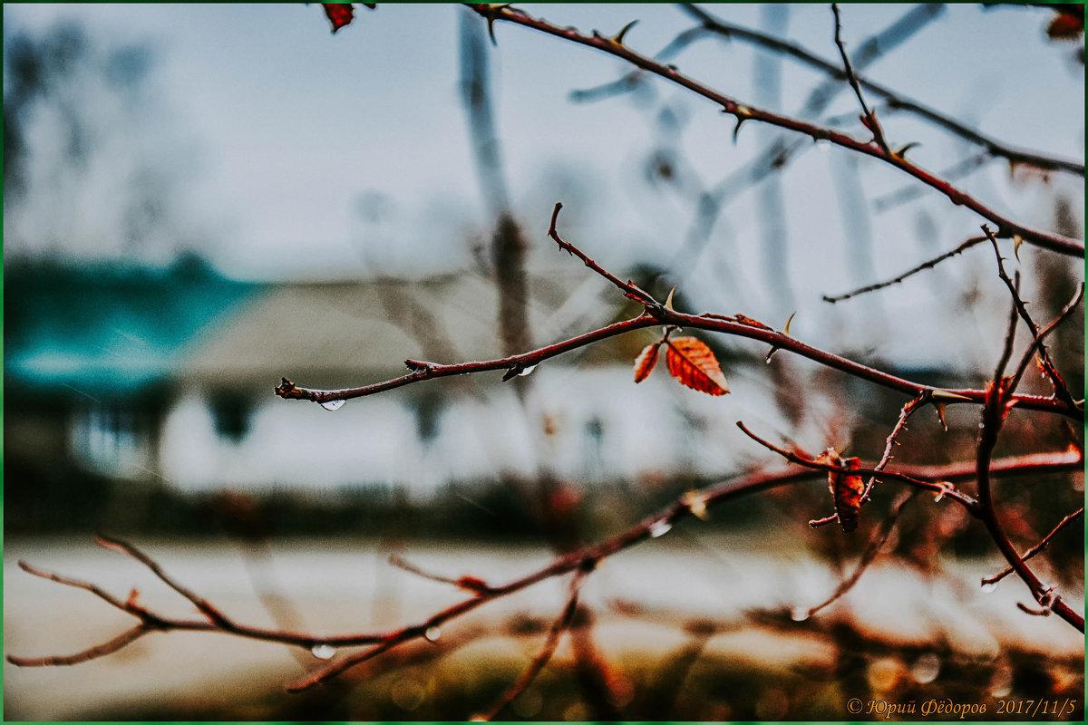 Осень. - Юрий Фёдоров