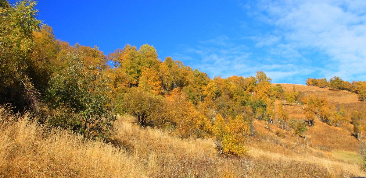 Осенняя мелодия - Vladimir 070549