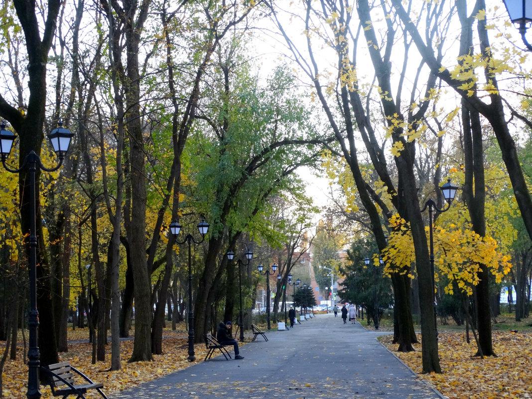 Парк,вечер в ноябре... - Тамара (st.tamara)