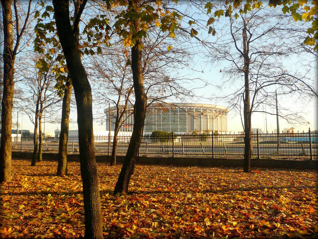 СКК в Санкт-Петербурге - Galina Belugina