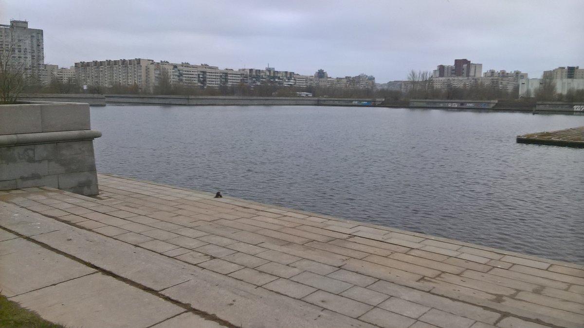 Прогулка - Митя Дмитрий Митя
