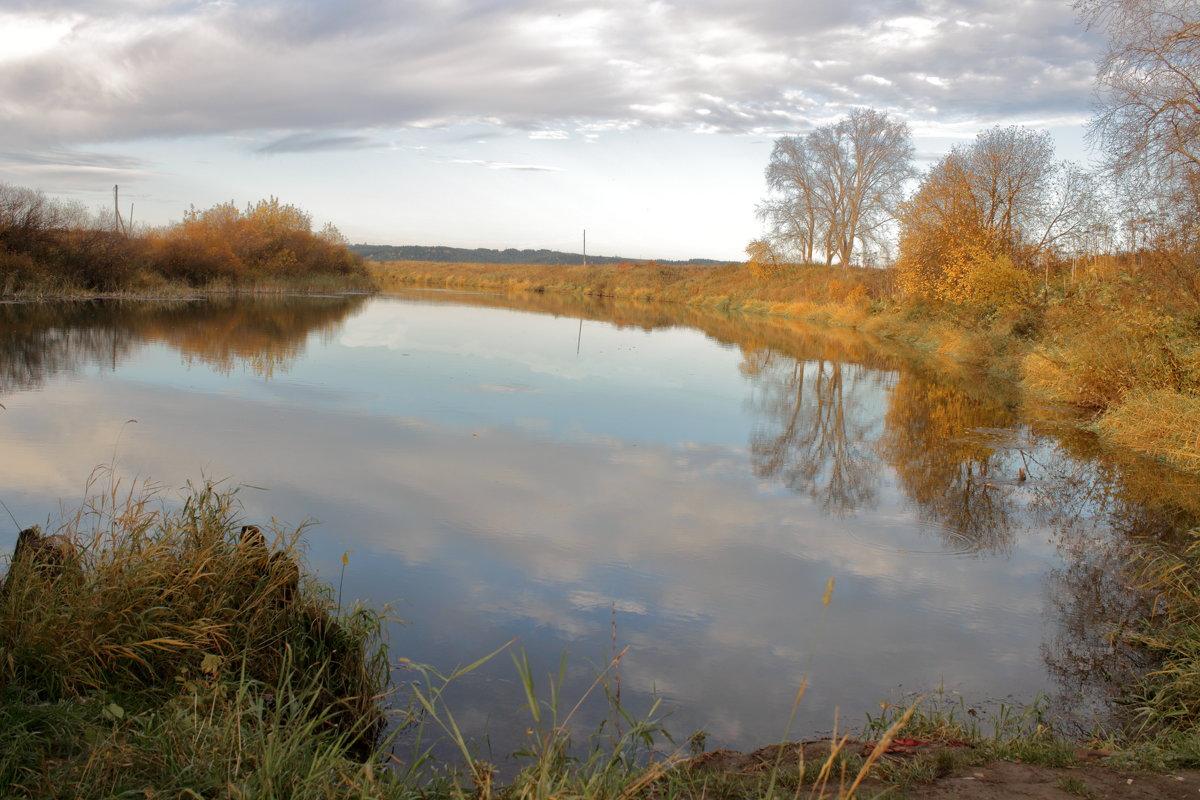 Река Воя - Татьяна Шаклеина