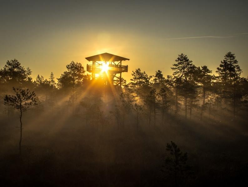 Начинается новый день... - Anna Klaos