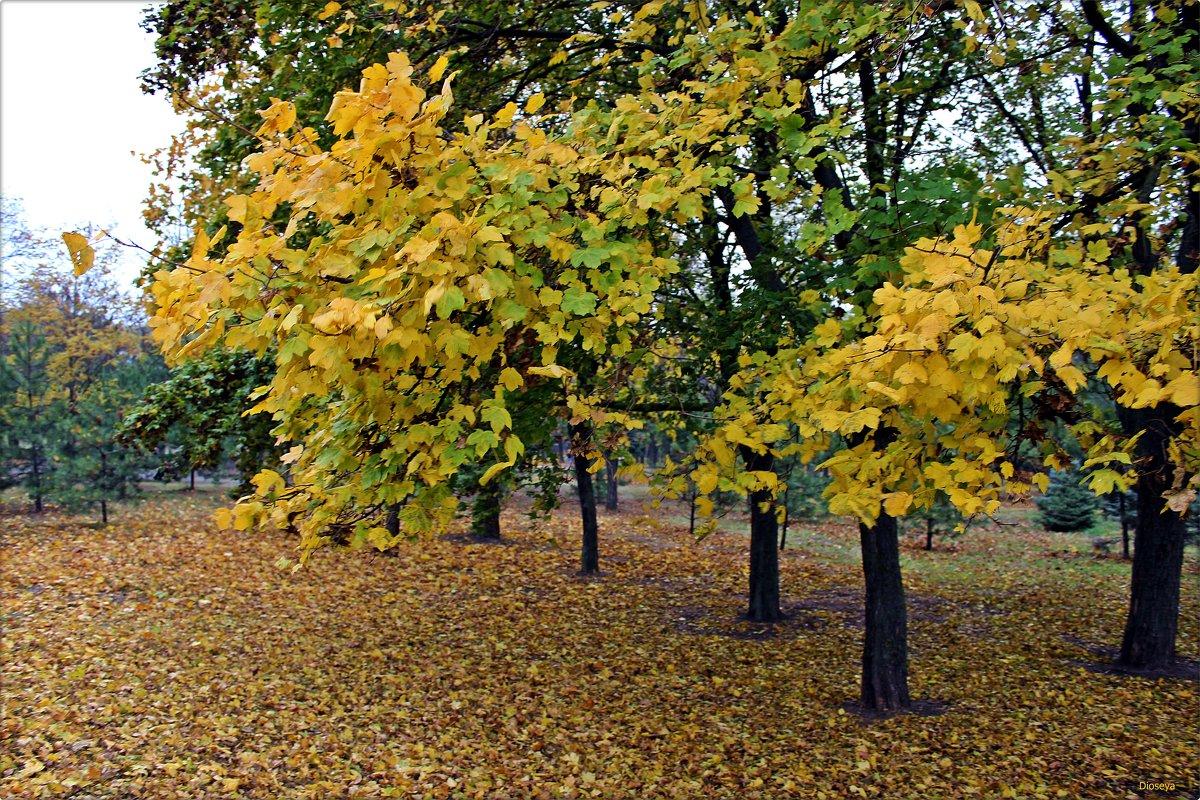Осень - Татьяна Пальчикова