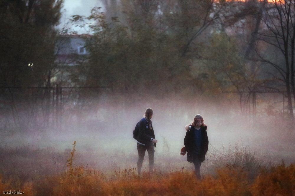 Двое из тумана - Анатолий Шулков