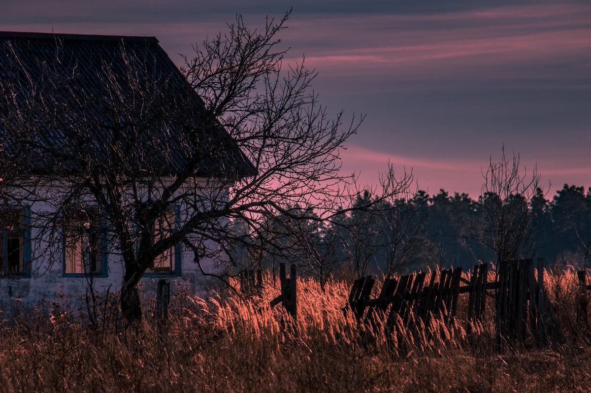 Дом, в котором никто не живет - Владимир Новиков