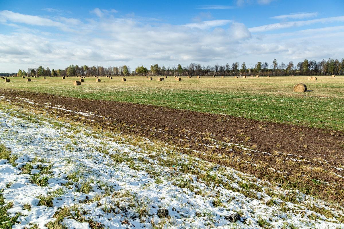 Первый снег - Андрей Кузнецов