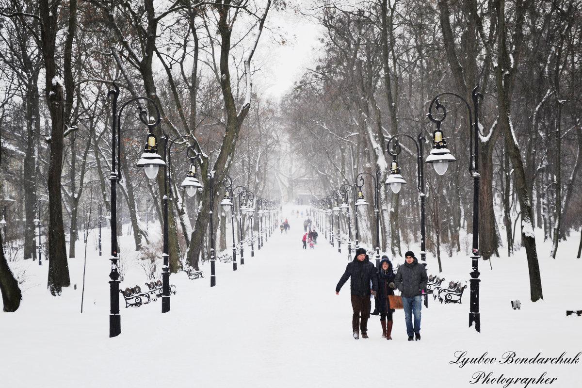 Природа, зима - Любовь
