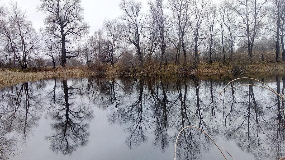 Осеннее озеро - Александр Алексеев