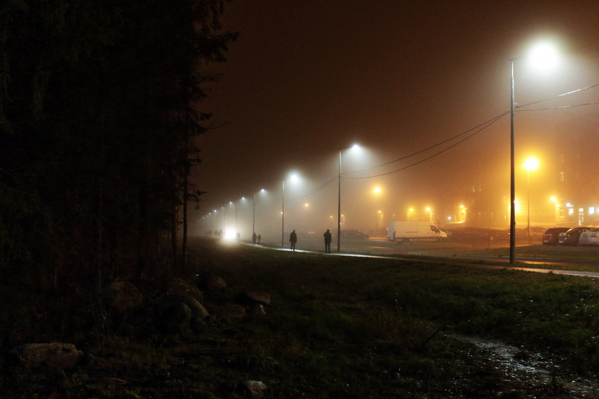 туман5 - Игорь Свет