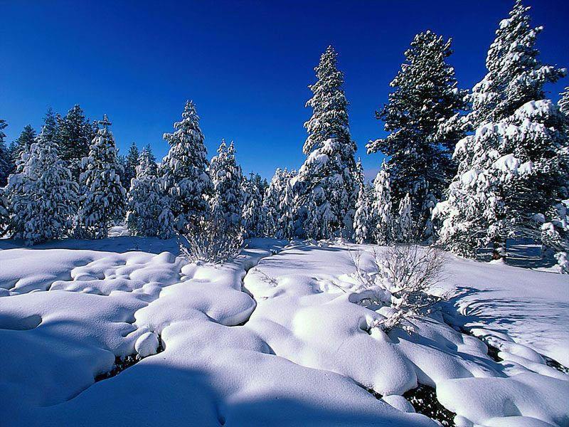 зима - vladimir polovnikov