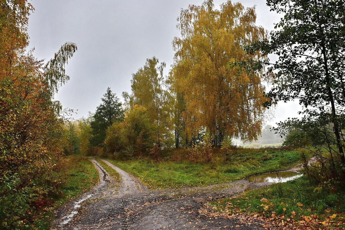 Осень. - Валера39 Василевский.