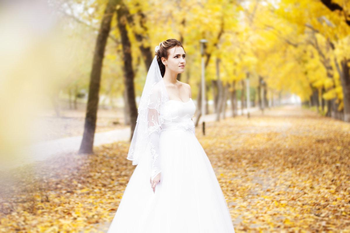 Невеста - Настя Кругосветова