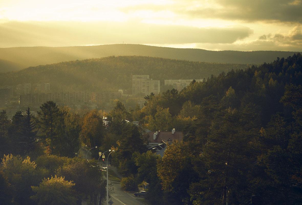 Город в лесу - андрей