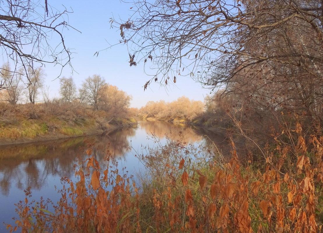 Я ходила трогать осень за оранжевые ветки... - Елена Ярова