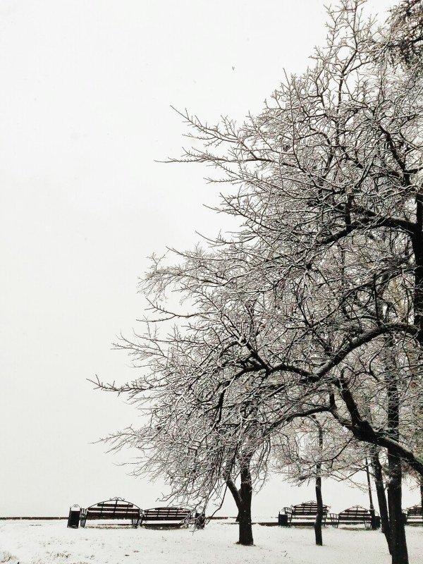Снежная осень. - Ирина