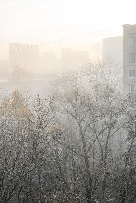 Москва в тумане - Игорь Герман