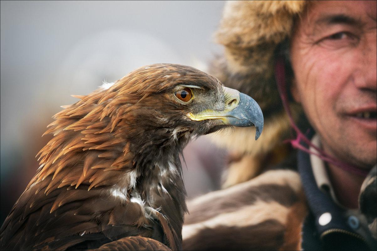 Eagle Eye - Влад Соколовский