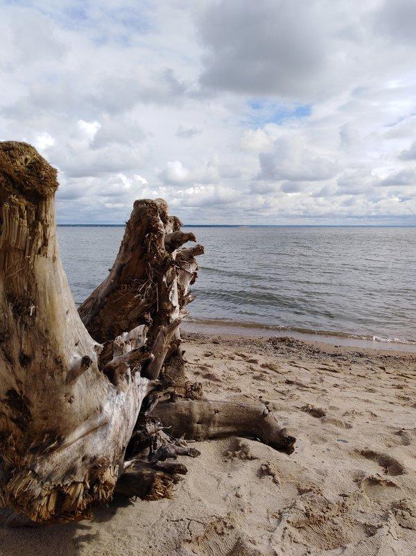 Обское море (Новосибирск) - Наталья