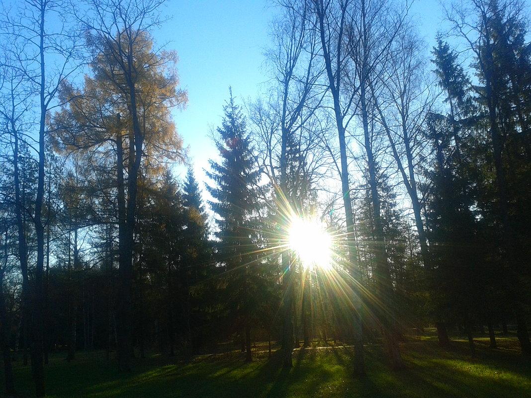 Осенний день - Сапсан