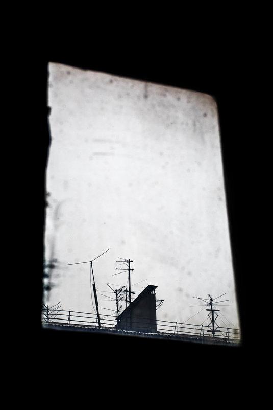 "из цикла ""Корабли в моей гавани..."" - Галина Щербакова"