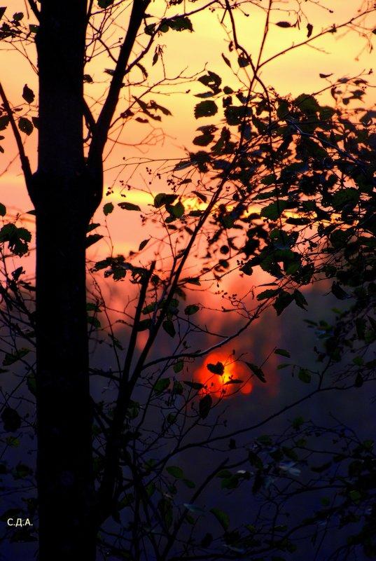Закат в Клину.  Воскресная зарисовка) - Дмитрий