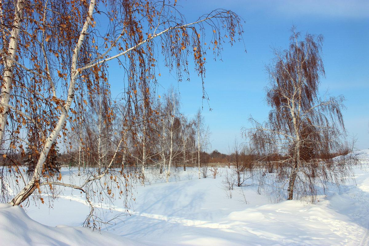 Зима в сибире - раиса Орловская