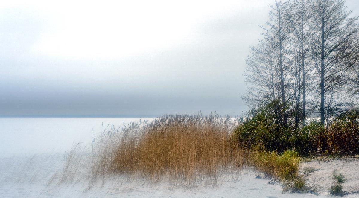 Первый снег - Valerii Ivanov