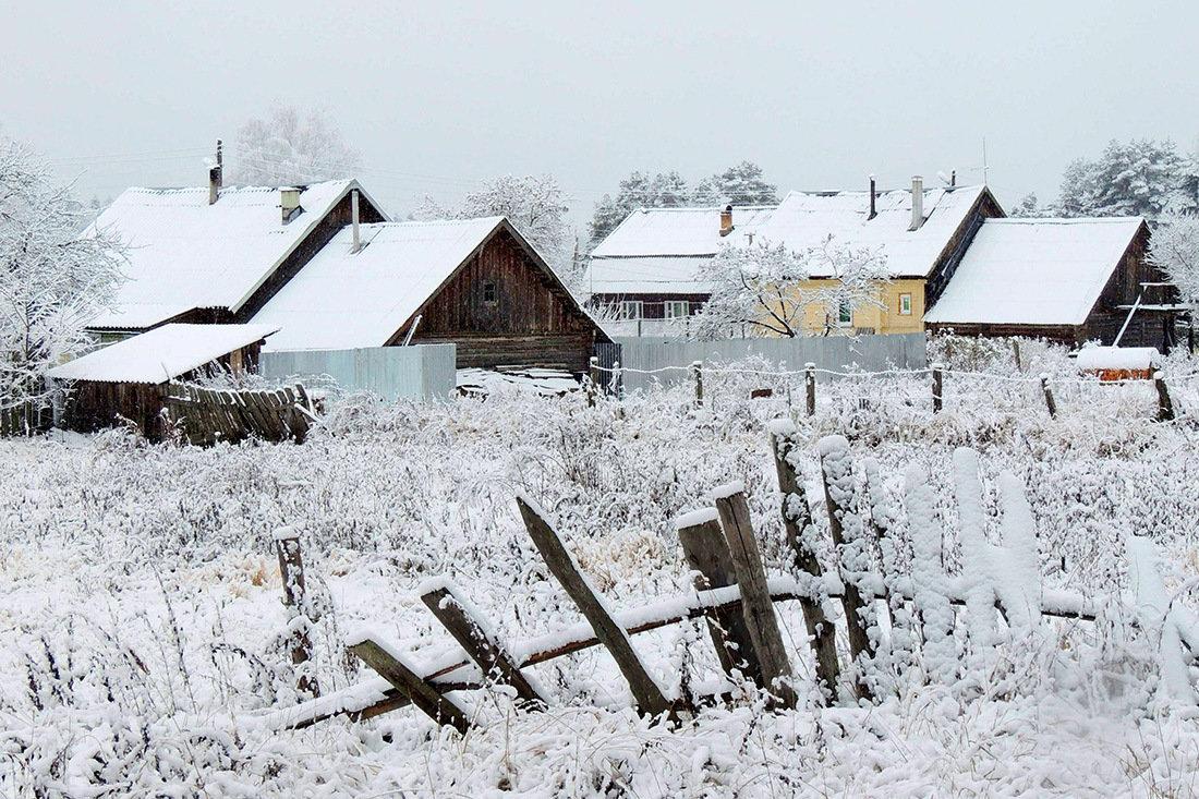 Мы ее не ждали, а зима все таки пришла - Павлова Татьяна Павлова
