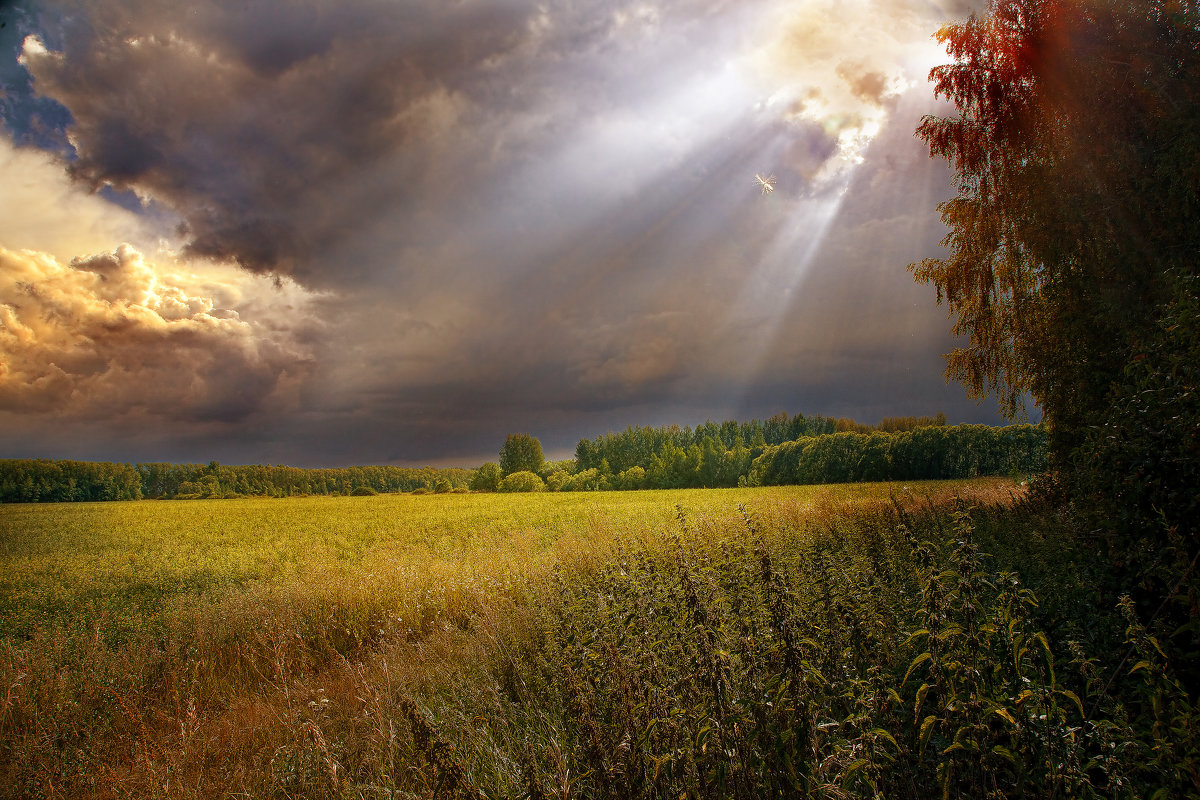 Перед бурей - Владимир