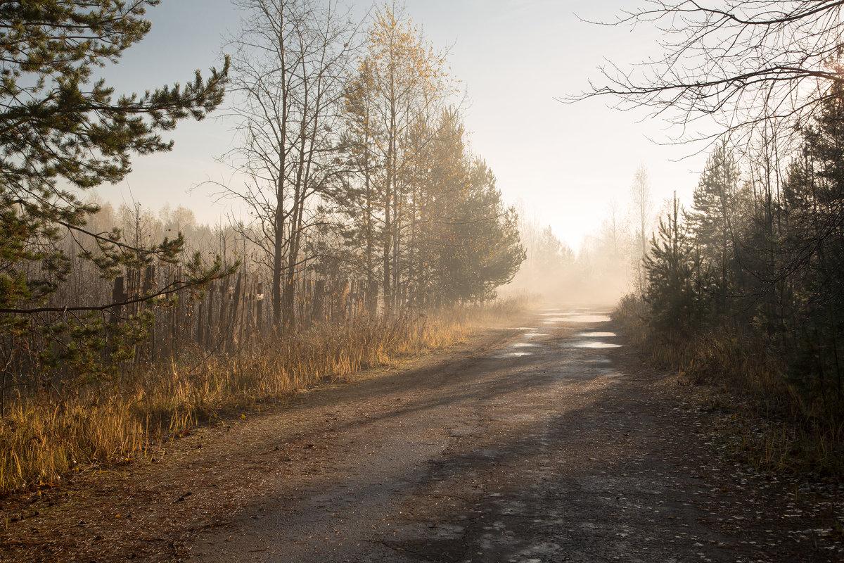 Просто осень... - Sergey Apinis
