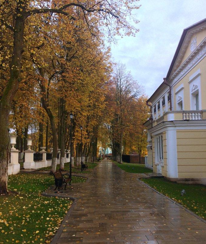 По аллее с  осенью.... - Наталья Соколова