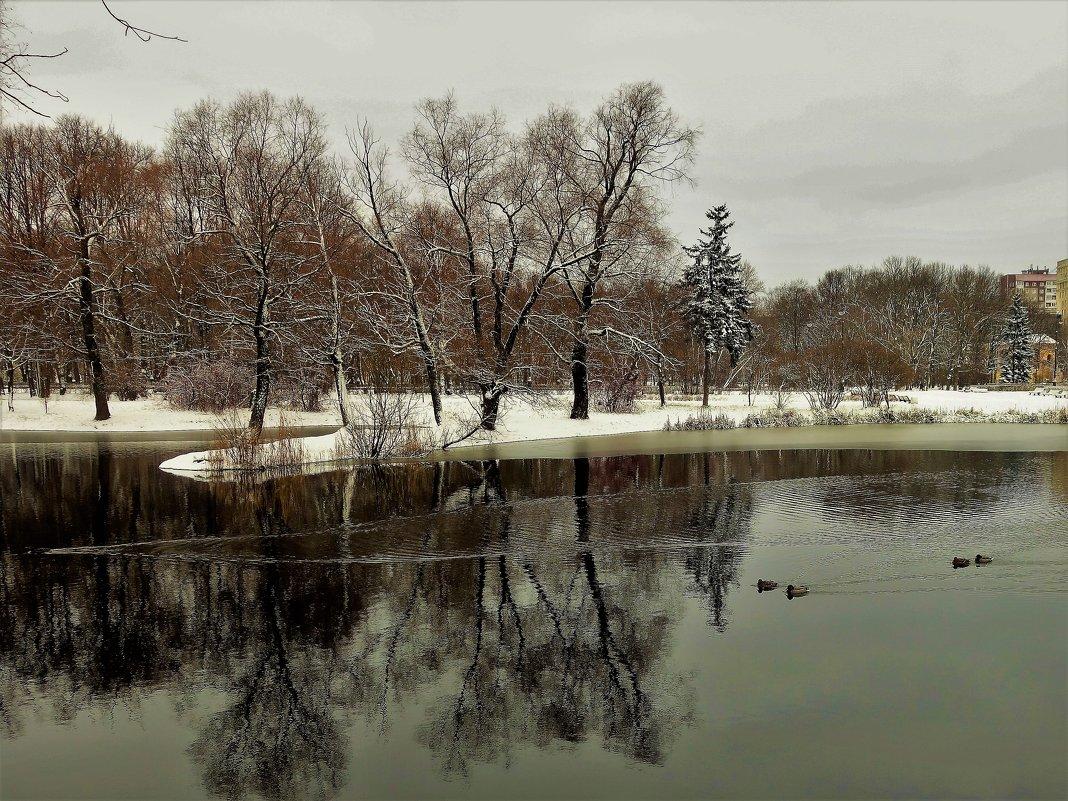 Осенний день,в зимнем очаровании... - Sergey Gordoff