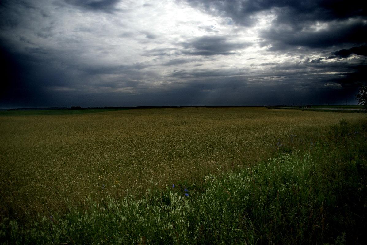 Перед дождем - Aleksandr Ivanov67 Иванов