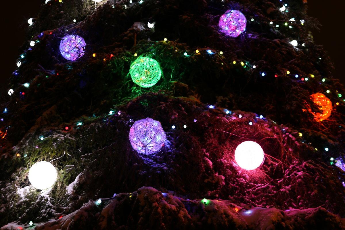 Сколько на ёлочке шариков цветных... - Ольга