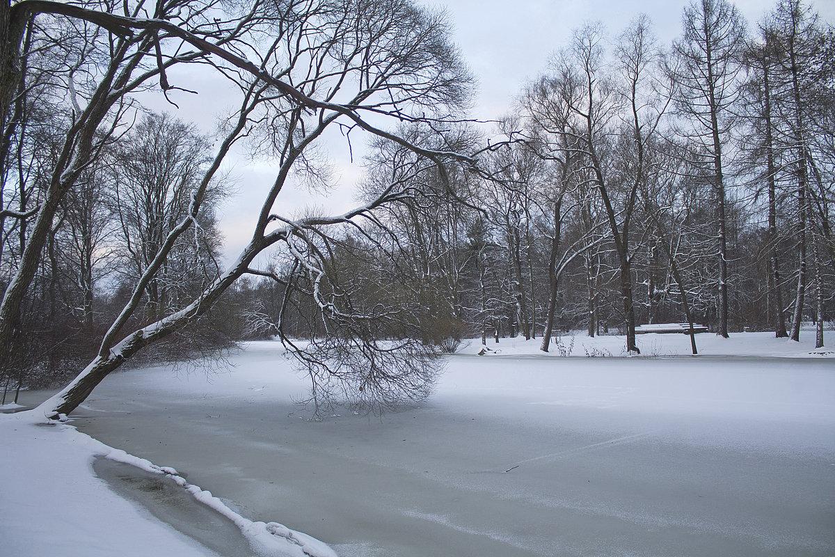 Зимний сон природы. - Senior Веселков Петр