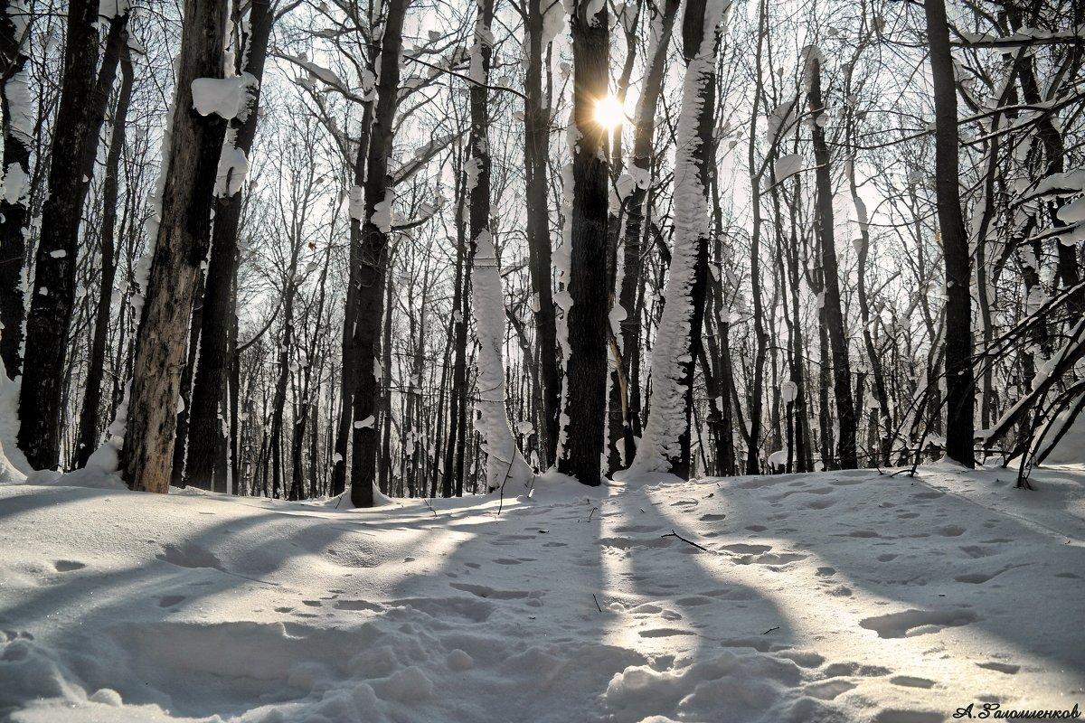 Вот и Новый год на носу.. Скоро в баню.. Как незаметно время летит..:) - Андрей Заломленков