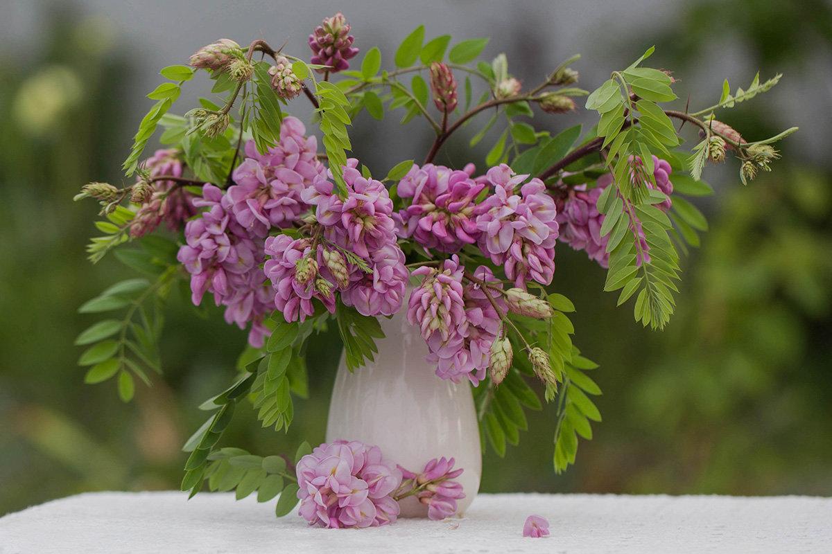Розовая акация - Елена Ахромеева